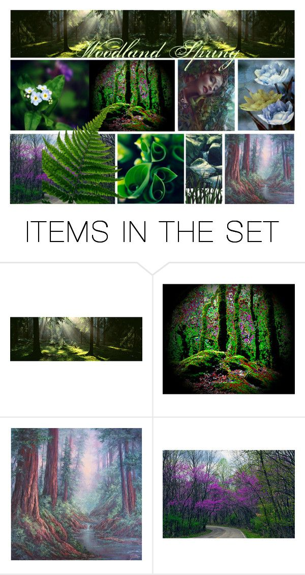 """""""Woodland Spring"""" by chilirose-creative ❤ liked on Polyvore featuring art"""