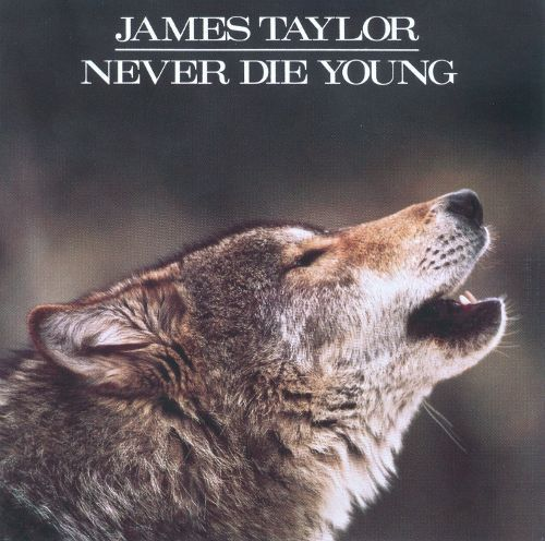 Never Die Young [CD]
