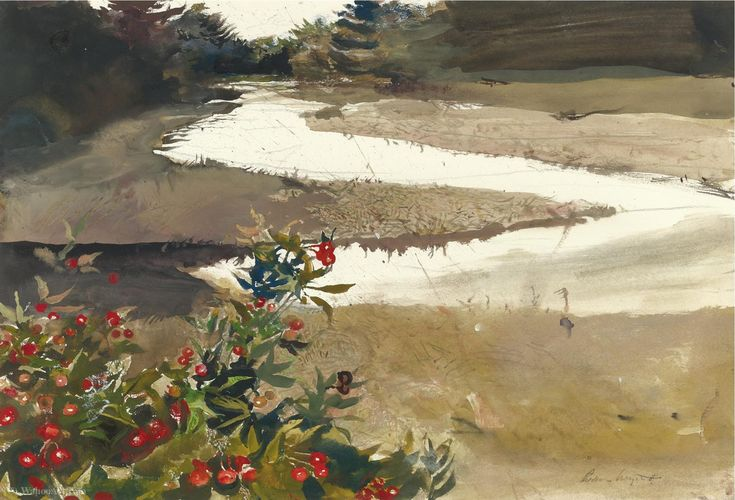 Andrew Wyeth - Rose hips (study for back water)