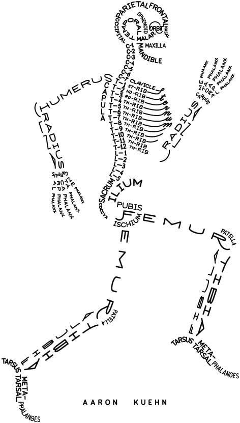 The easy way to remember human skeletal system