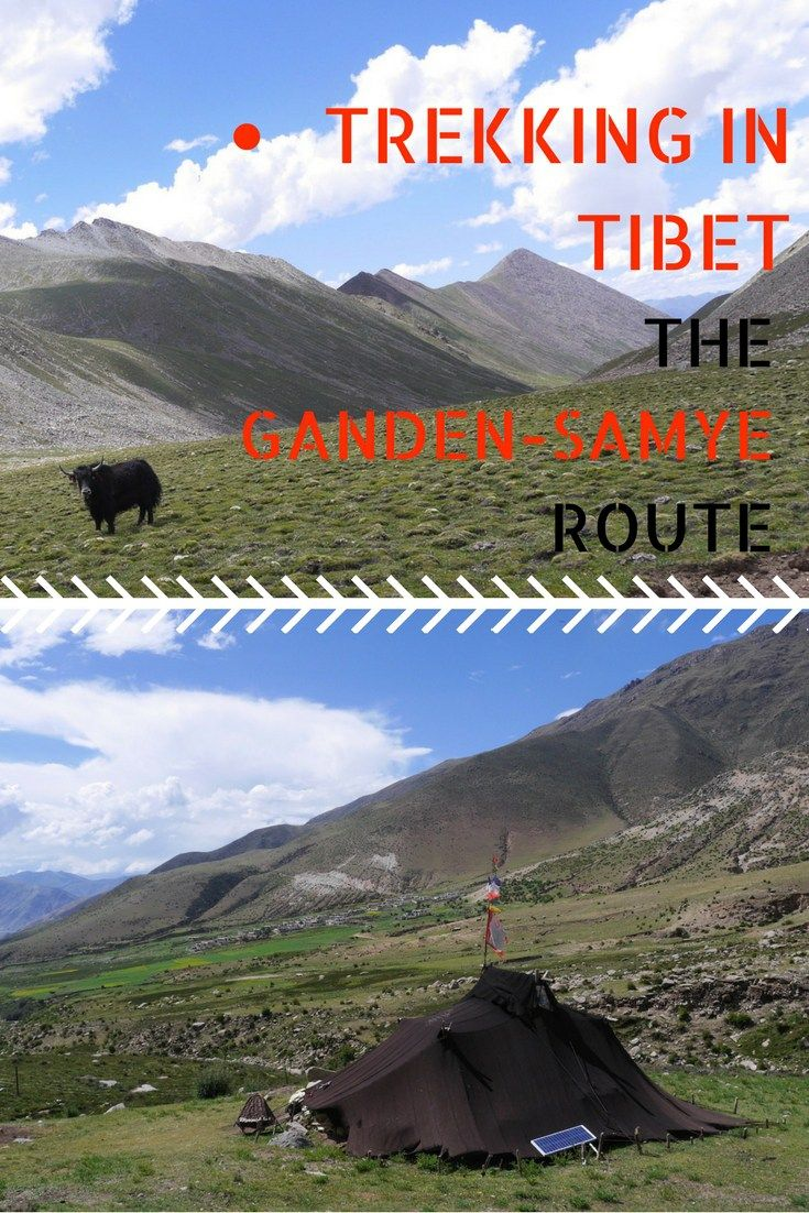 Doing some trekking in Tibet as a solo traveler is possible and rewarding! You get to discover Tibetan nomadic culture, wildlife, and extreme landscape. But at times, being a female solo traveler has downsides and challenges. Here's what happened to me on the Ganden-Samye route in Tibet. #travelsolo #femalesolotraveler #traveltibet #trekkingtibet #gandensamye #trekwithyaks #travelasia #travelchina #tibetannomads #tibethighlights #mountainphotography #yaks #tibetanlandscapes…