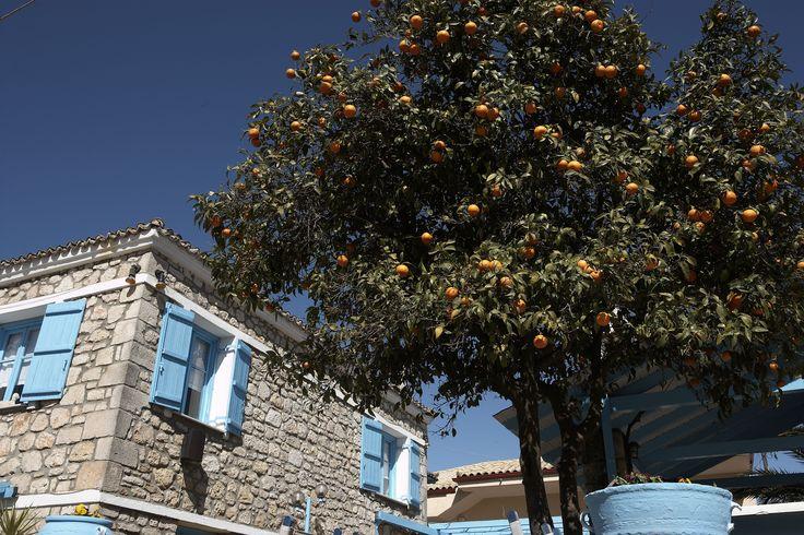 Beautiful Halkidki - Greece