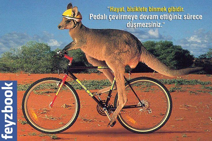 """""""Hayat, bisiklete binmek gibidir. Pedalı çevirmeye devam ettiğiniz sürece düşmezsiniz."""""""
