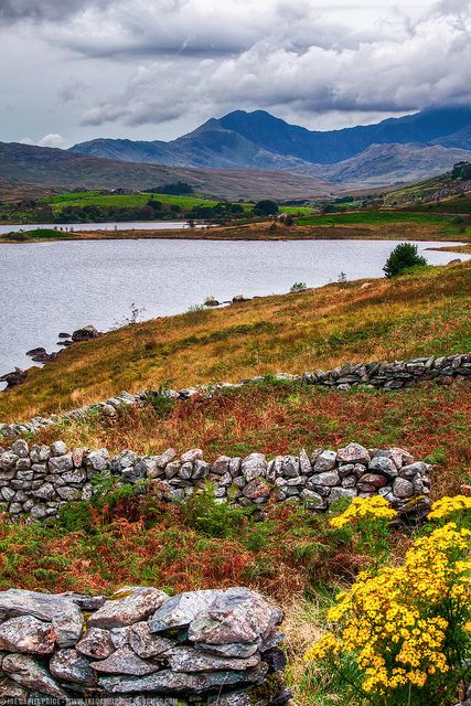 Mawddach Estuary North Wales. The Mawddach Trail takes you through this beautiful area.