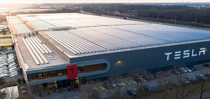 Tesla S European Gigafactory 4 To Begin Construction As Early As January 2020 Tesla Tesla Factory Electric Cars