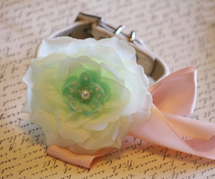 Peach Mint wedding dog collar, flower with Pearl, Wedding dog accessory, Peach Mint Wedding accessory