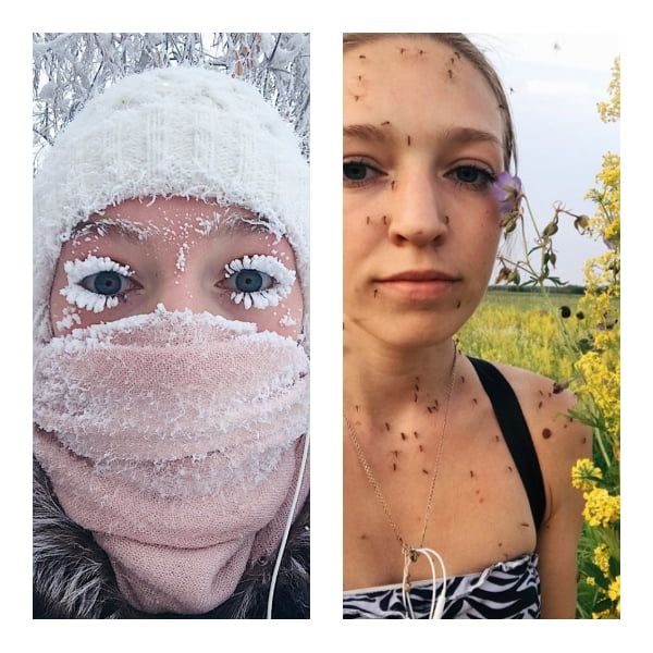 Winter in Siberia. Summer in Siberia.