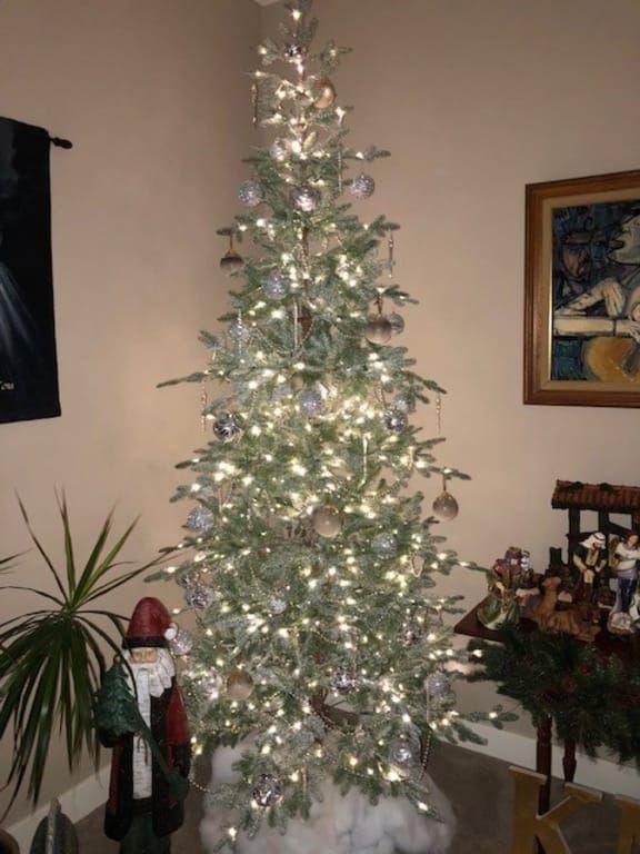 Frosted Alpine Balsam Fir Artificial Christmas Tree Balsam Hill Balsam Hill Christmas Tree Balsam Fir Balsam Fir Tree