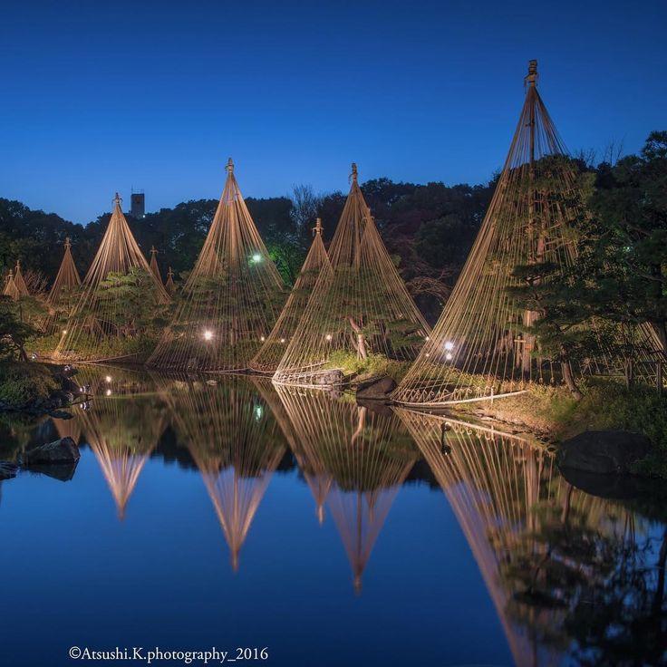 雪吊りブルーアワー。 愛知県名古屋市 白鳥庭園 ・ #tokyocameraclub #東京カメラ部 #igersjp #lovers_nippon #loves_nippon #ig_worldclub #ig_japan #icu_japan #bns_japan #wu_japan #webstagram #wounderful_places #nightphotography #1x #phos_japan #picture_to_keep #photooftheday #color_of_day #s_shot #japan_night_view #team_jp_西 #instagramjapan  #写真好きな人と繋がりたい #写真撮ってる人と繋がりたい #ファインダー越しの私の世界 #instagood #instagrammer #photo_shorttrip #jal東京カメラ部2017japan #jalan_asobi
