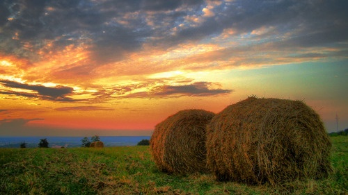 Ajka, Hungary pp: The sunsets here are some of the most beautiful i have ever seen.