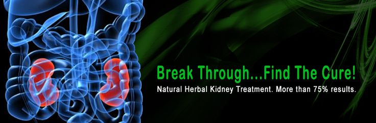 The kidney is the important part of the human body. Today's kidney failure is the biggest problem in the world. Now #Ayurved brings herbal treatment for you. Call us at +91 8699017567 for more information.