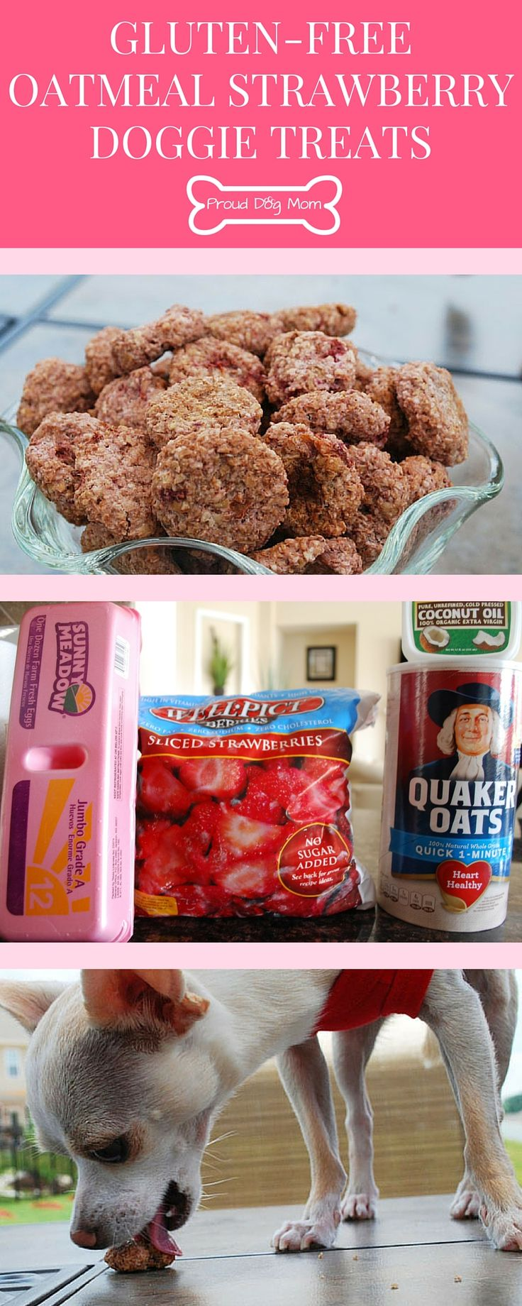 Gluten-Free Oatmeal Strawberry Doggie Treats | Homemade Healthy Dog Treats | DIY Dog Treats | Gluten-Free Recipes |