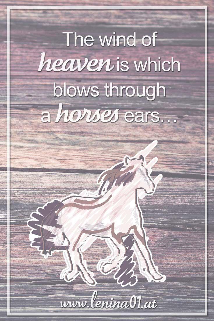The wind of heaven is which blows through a horses ears... #Pferde #PferdeSprüche