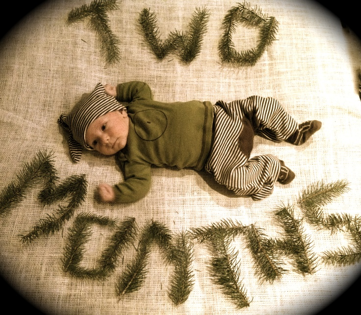2 Month Old, Photos Ideas, Pics Ideas, Baby Photos, Trees Limb, Baby'S Age
