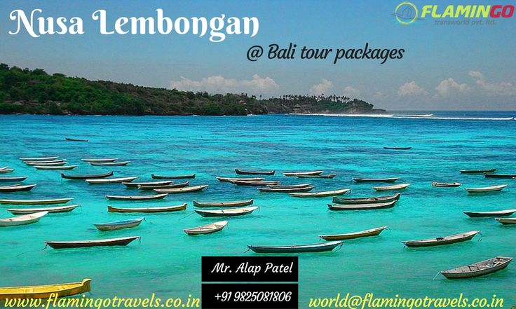 Bali has something to offer to everybody who is going to and that makes it an incredible travel goal for everybody. You will really require an interminable occasion in the event that you wish to investigate all of Bali tour packages.