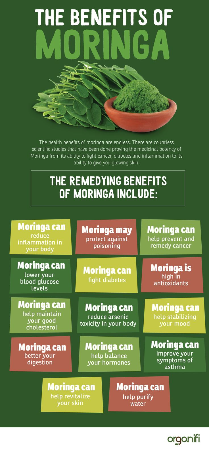 Moringa is a tree that's sometimes called the Tree of Life. It has been used as natural medicine in many cultures because of its antioxidant and inflammation reducing properties. When the remedying benefits of a plant have been proven for centuries, it makes you curious, doesn't it?
