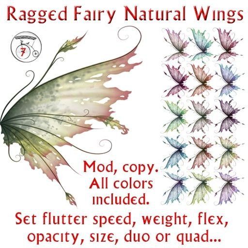 ragged fairy wings                                                                                                                                                                                 More