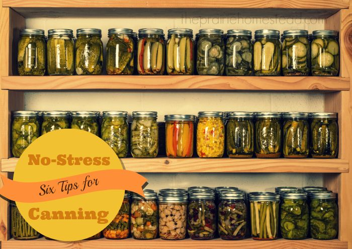 "(No, this isn't my pantry– but I sure wish that it was! ;)) Canning– it's not just for your grandmother anymore! It seems that more and more people of my generation are starting to have the desire to learn how to can. What was once a practice that was considered only for ""old-timers,"" is now …"