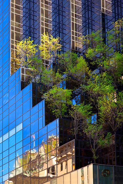 Trump Tower, New York City USA http://greenenergy-d4f3k2sn.canitrustthis.com