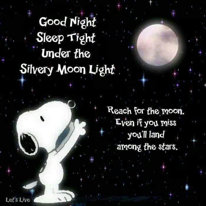 103 Best Good Night Spreuken Images On Pinterest