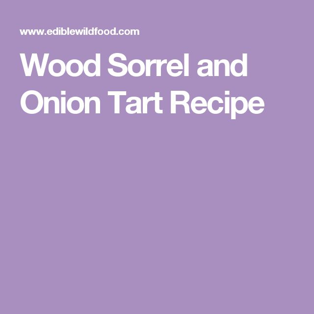 Wood Sorrel and Onion Tart Recipe
