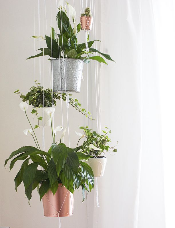 Adding Greenery To A Room Can Really Change The Dynamic Of Your Home. These  Metallic Potted Plant Holders Look Super Effective Against A White Wall U0026  The ...