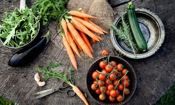 Ät grönsaker 500 g