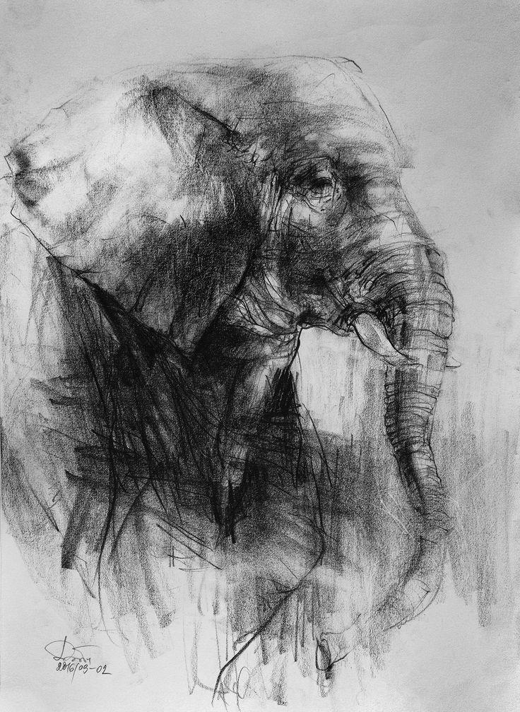 elephant (pencil 29,7x42cm)