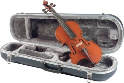 Considering a new or used violin? Read our article here http://violins-for-sale.com/2013/04/why-look-at-new-violins