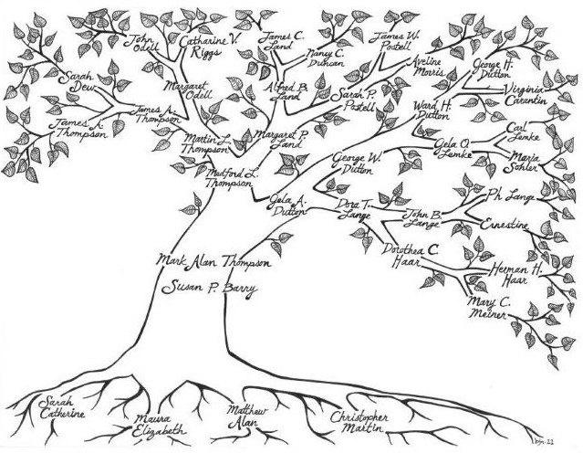 drawing family tree - Apmayssconstruction