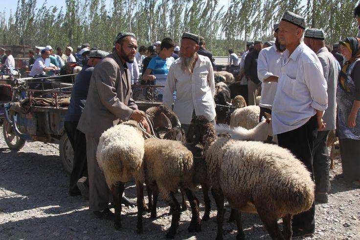 Afinal o segredo está na gordura do rabo, pensei eu quando visitei o mercado de gado de Kashgar!Kashgar é a primeira cidade chinesa depois de atravessar o passo de Torugart, na fronteira com o Quirguistão. Assentamos aí por uns dias. Precisávamos de tomar banho (algo que não podíamos fazer nas yurts do Quirguistão), lavar roupa, …