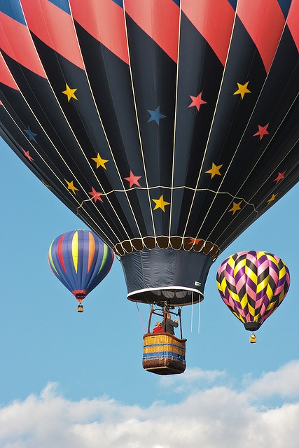 Hot Air Balloons-Up Up And Away!