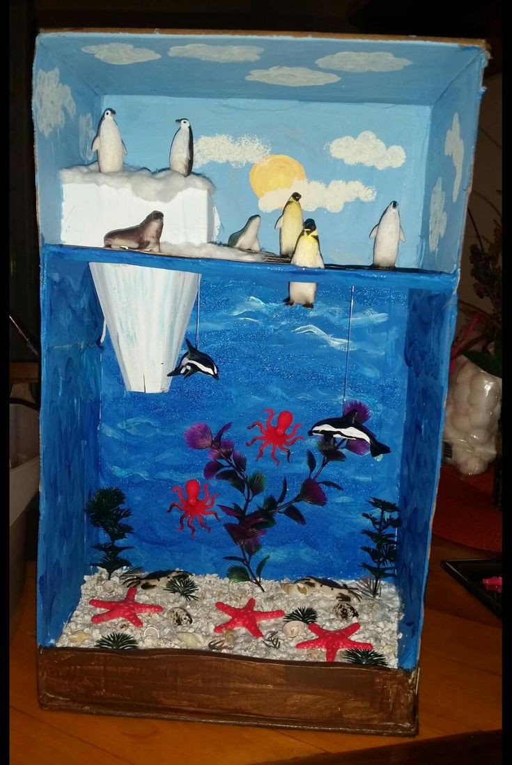 Kitchen Diorama Made Of Cereal Box: Arctic Habitat Diorama 2nd Grade Project