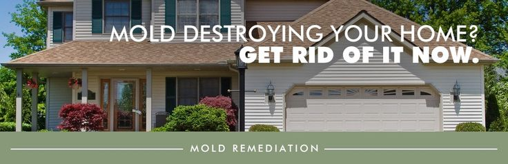 "We return mold-impacted environments to ""normal"" by mold testing and moving mold-impacted source materials, but we don't stop with just removing mold. We identify the source cause of the mold and repair the source problem so the mold does not return."