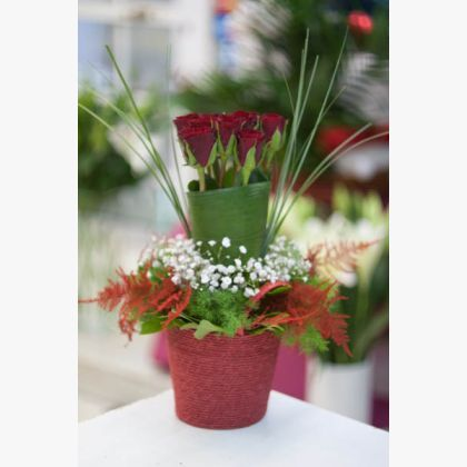 Σύνθεση σε καλαθάκι με 7 κόκκινα τριαντάφυλλα.