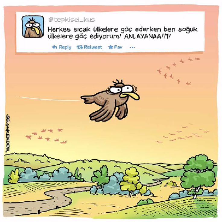 267 Pin 208 Takipçi En güzel Selçuk Erdem karikatürleri Selçuk Erdem #selçukerdem #selcukerdem #karikatür #mizah #çizgi #komik #penguen #penguendergi