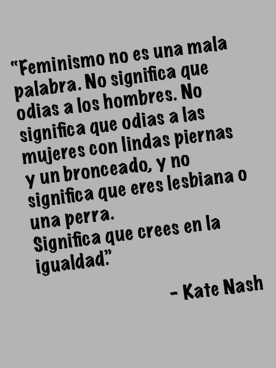 Feminismo para noobs