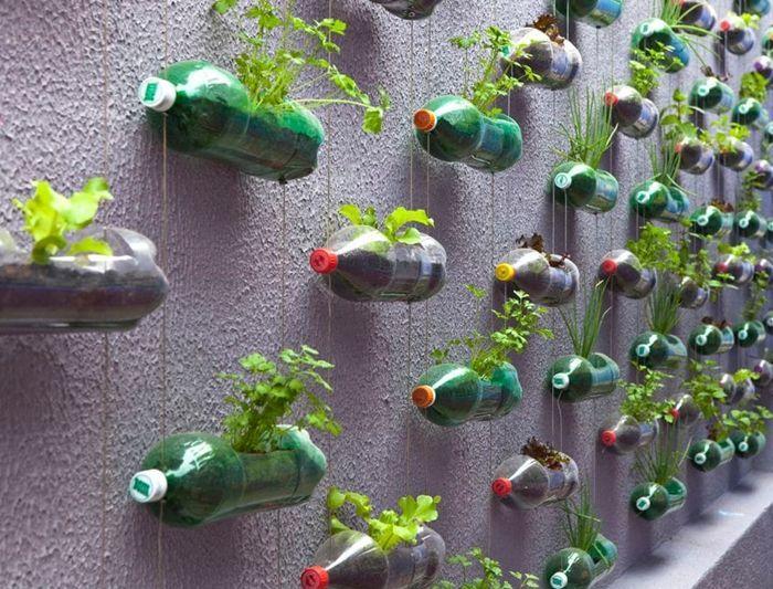 26++ Jardiniere avec bouteille en plastique trends