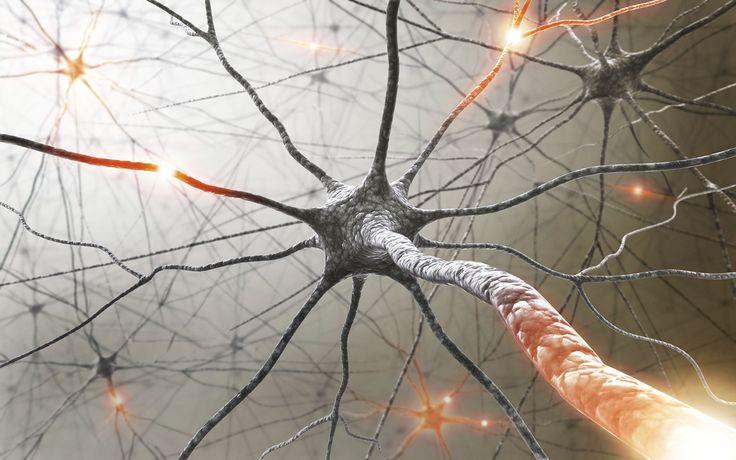 Genellikle MS olarak bilinenbu hastalıkmerkezi sinir sistemini etkileyen bir otoimmün(vücudun kendi kendine saldırması) hastalıktır.  Ms derneğine göre, bu hastalığın kesin nedeni bilinmemektedir. Vücudumuzda miyelin adında bir madde vardır. Bu madde beyin ve omurilik deki sinir liflerini …