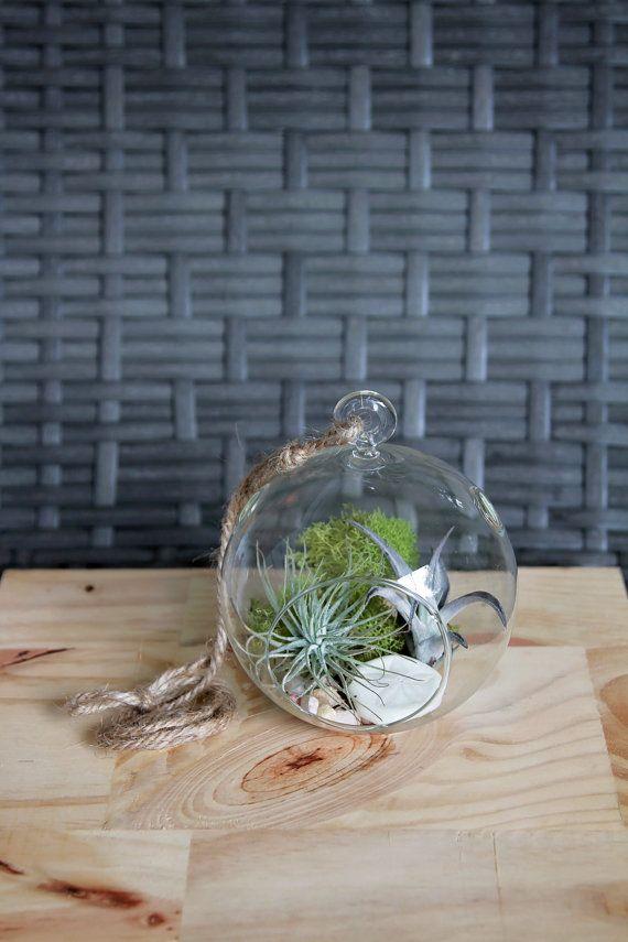Die 25+ besten Ideen zu Indoor Pflanzen Dekor auf Pinterest ...