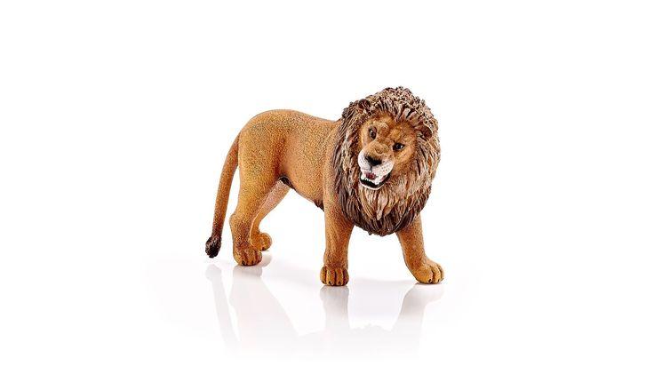 Schleich - Figura león rugiente (14726): Amazon.es: Juguetes y juegos