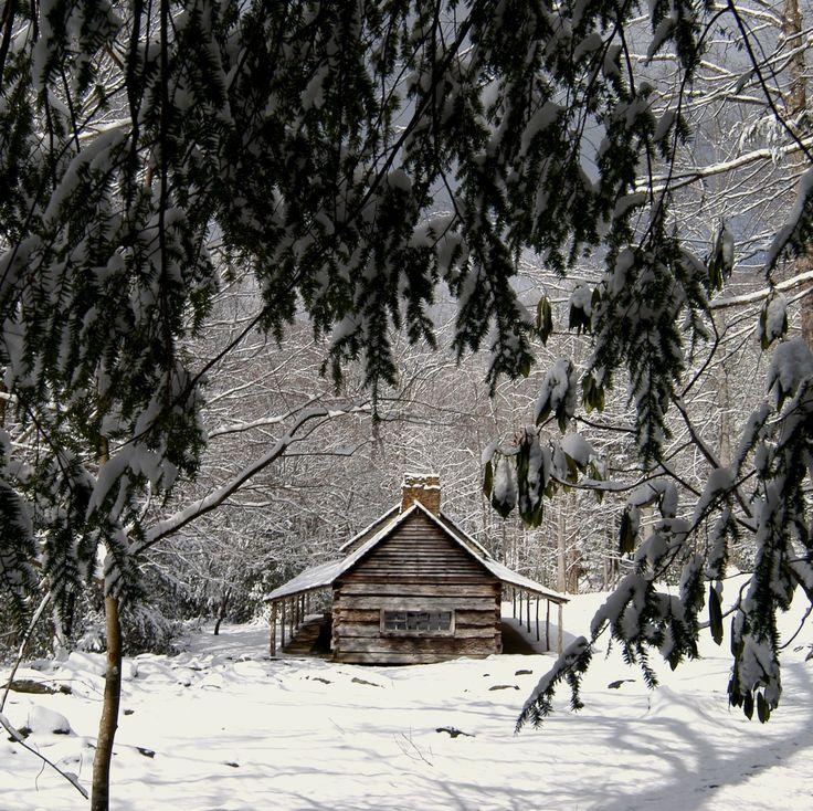 105 Best Winter In The Smokies Images On Pinterest