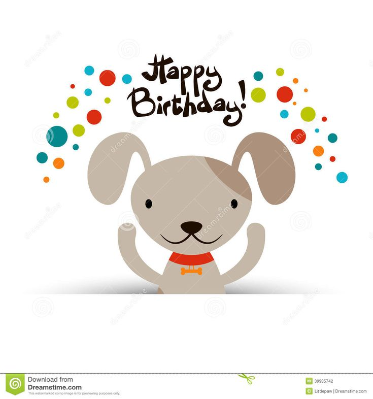Happy Over The Hill Birthday Birthday Humor Dog Card: Best 25+ Friend Birthday Meme Ideas Only On Pinterest