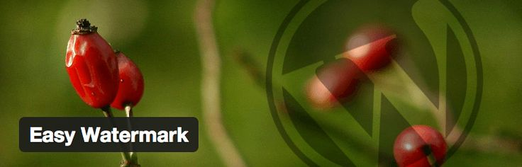 How to Add Watermark Automatically to Images in WordPress