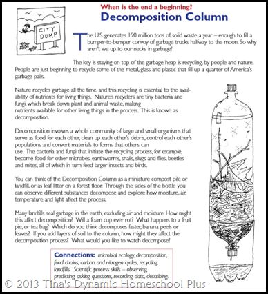 decomposition experiment for kids | ... decomposition column looks like a great idea for a fun and easy hands