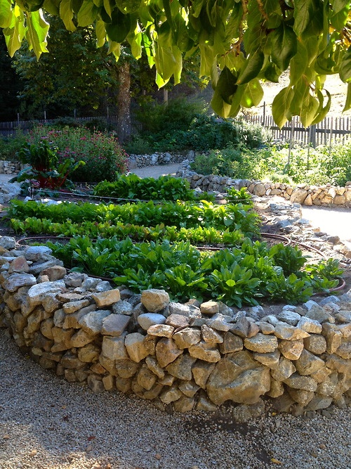 The 25 best Stone raised beds ideas on Pinterest Potager garden