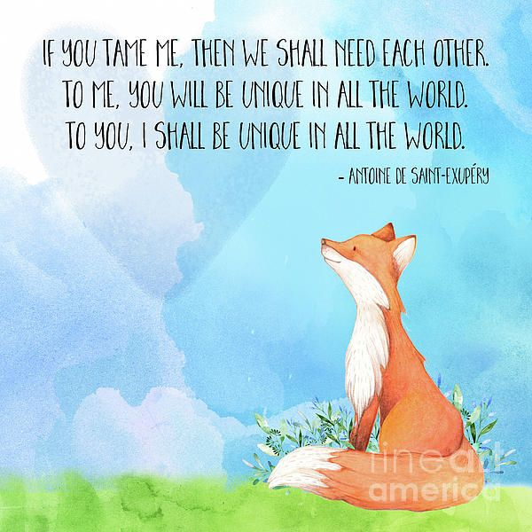"""""""If you tame me, then we shall need each other. To me, you will be unique in all the world. To you, I shall be unique in all the world."""" from The Little Prince"""
