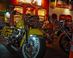 Rot Rally - Austin, Texas