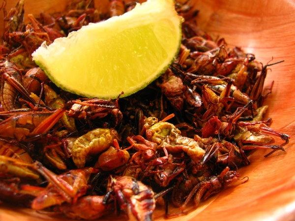 Chapulines Comida Oaxaquena