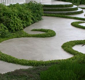 31 best new zealand native gardens images on pinterest for Landscaping companies in new zealand